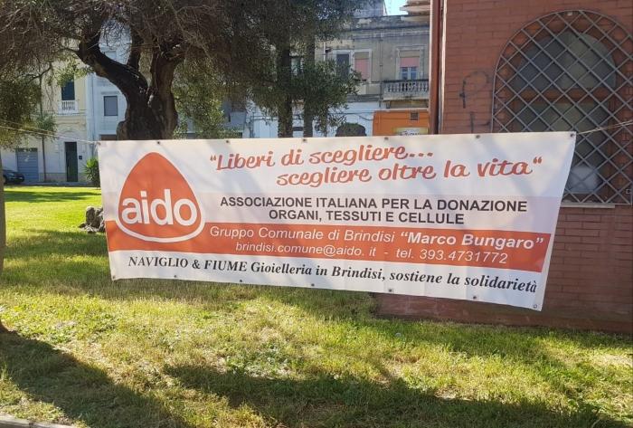 Aido-giardino_041